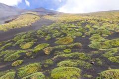 Schilderachtig vulkanisch landschap van Onderstel Etna, Sicilië, Italië stock foto's