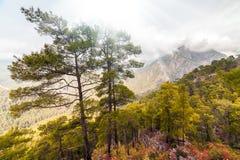 Schilderachtige die scène in Goynuk-canion, in District van Kemer, Antalya-Provincie wordt gevestigd Mooi zonsopganglandschap in  Royalty-vrije Stock Afbeelding