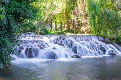 Schilderachtige die waterval door het groene bos wordt omringd Royalty-vrije Stock Afbeeldingen