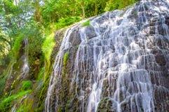 Schilderachtige die waterval door het groene bos wordt omringd Royalty-vrije Stock Fotografie