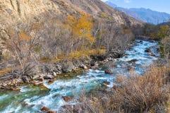 Schilderachtige en snelle bergrivier in Kyrgyzstan Royalty-vrije Stock Foto's