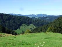 Schilderachtige heuvels, bossen en weilanden in Ostschweiz stock fotografie
