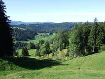 Schilderachtige heuvels, bossen en weilanden in Ostschweiz royalty-vrije stock foto's