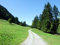 Schilderachtige heuvels, bossen en weilanden in Ostschweiz stock afbeeldingen