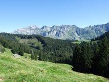 Schilderachtige heuvels, bossen en weilanden in Ostschweiz stock foto