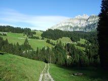 Schilderachtige heuvels, bossen en weilanden in Ostschweiz royalty-vrije stock afbeelding