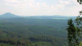Schilderachtige hoogste mening over dicht groen bos in natuurreservaatreserve stock footage