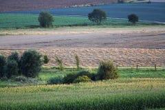 Schilderachtige Landbouw Stock Afbeelding