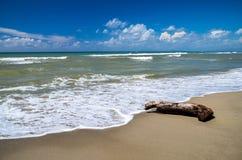 Schilderachtige mening over Italiaans zandig strand Marina di Vecchiano nabijgelegen Pisa, Italië Stock Fotografie
