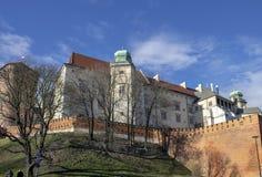 Schilderachtige mening van Wawel-Kasteel Kasteel in centraal Krakau wordt gevestigd dat stock afbeelding