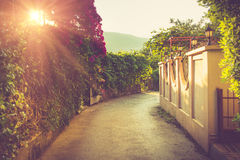 Schilderachtige smalle die straat met overvloed van bloemen bij zonneschijn wordt verfraaid Budva montenegro royalty-vrije stock foto's