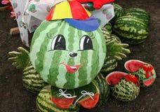 Schilderde de watermeloen met een gezicht en een bos van rijpe watermelo Stock Fotografie