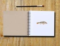 Schilderend boek Stock Afbeelding