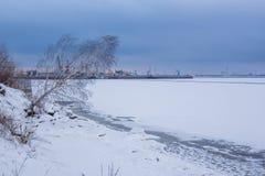 Schilderlandschapsbank van bevroren rivier met bochtige het groeien berk in de winter royalty-vrije stock afbeelding