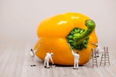 Schilders die groene paprika kleuren Grote details! royalty-vrije stock afbeelding