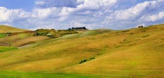 Schildertuscana-landschappen Stock Foto