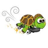 Schildkröte auf einem Skateboard Stockbild
