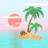 Schildkröte auf einem Strand Lizenzfreie Stockfotos