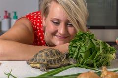 Schildkröte, die römischen Salat isst, während junge Frau ihn betrachtet Stockbilder