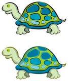 Schildkröte mit 2 Karikaturen Lizenzfreie Stockbilder