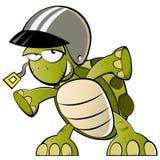 Schildkröte mit einem Sturzhelm Lizenzfreie Stockbilder