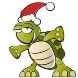 Schildkröte mit Weihnachtsmann-Hut Lizenzfreie Stockbilder