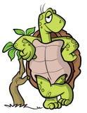 Schildkröte- oder Schildkrötenkarikaturabbildung Stockfotos