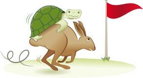 Schildkröte und Hasen Stockbild