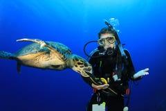 Schildkröte und Taucher lizenzfreie stockfotografie