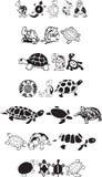 Schildkröteansammlung Lizenzfreies Stockbild