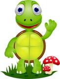 Schildkrötekarikatur Stockfotografie