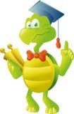 Schildkrötelehrer Lizenzfreie Stockfotos
