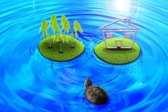 Schildkröten über der Insel. Stockfotografie