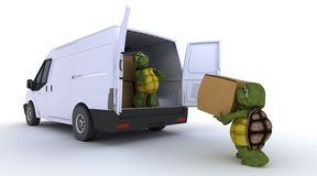 Schildkröten, die einen Packwagen laden Stockfotos