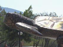 Schildkröten-Kopf Dalyan die Türkei stockfotos