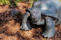 Schildkrötenstatue stockfoto