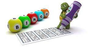 Schildkröte, die Bingo spielt Stockfoto