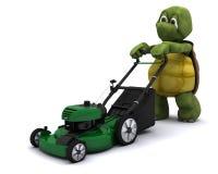 Schildkröte mit einem Rasenmäher Lizenzfreie Stockbilder