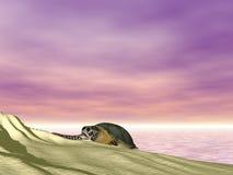 Schildpad bij Strand royalty-vrije illustratie