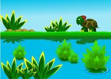 Schildpad die naast meer loopt Royalty-vrije Stock Fotografie