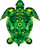 Schildpad een dier, een zeeschildpad, een dier met tekening, Stock Fotografie