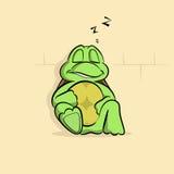 Schildpad een slaap Vector Illustratie