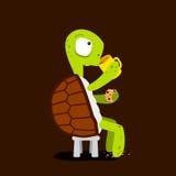 Schildpad het drinken thee met koekjes Stock Afbeelding