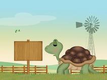 Schildpad in het landbouwbedrijf vector illustratie