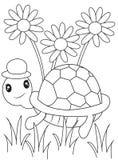 Schildpad kleurende pagina Stock Afbeeldingen