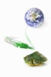 Schildpad, Lan kabel en wereldbol Stock Fotografie