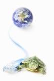 Schildpad, Lan kabel en wereldbol Royalty-vrije Stock Foto