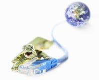 Schildpad, Lan kabel en wereldbol Royalty-vrije Stock Foto's