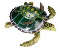 Schildpad met uw zoon Royalty-vrije Stock Afbeelding