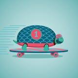 Schildpad op een skateboard Royalty-vrije Stock Afbeeldingen